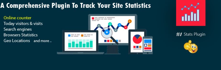 Visitor Traffic Real Time Statistics