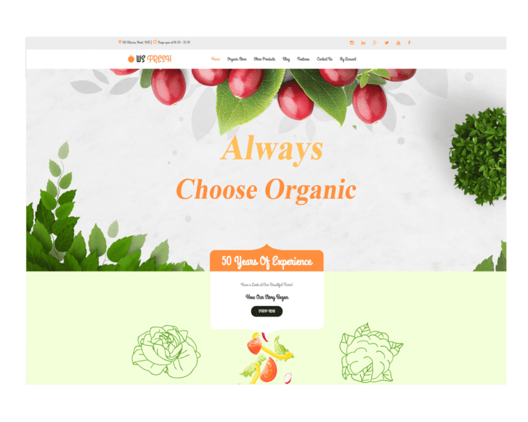 ws-fresh-free woocommerce-wordpress-theme