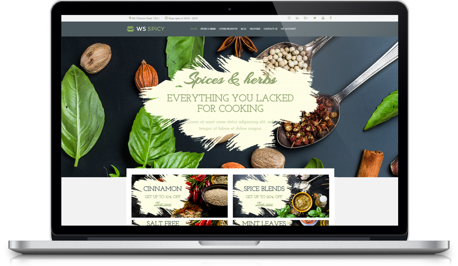 ws-spicy-free-responsive-woocommerce-wordpress-theme-desktop