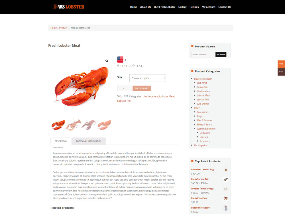 ws-lobster-free-responsive-wordpress-theme-product