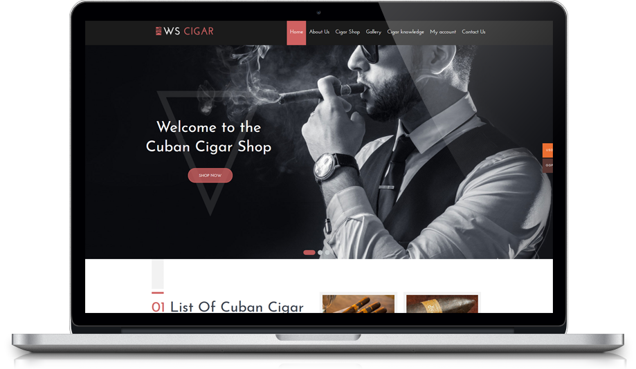 ws-cigar-free-responsive-wordpress-theme-macbook