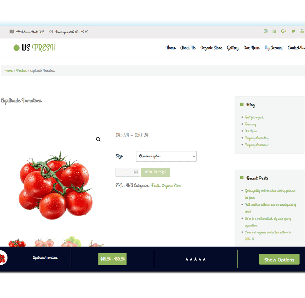 ws-fresh-screenshot-wordpress-product