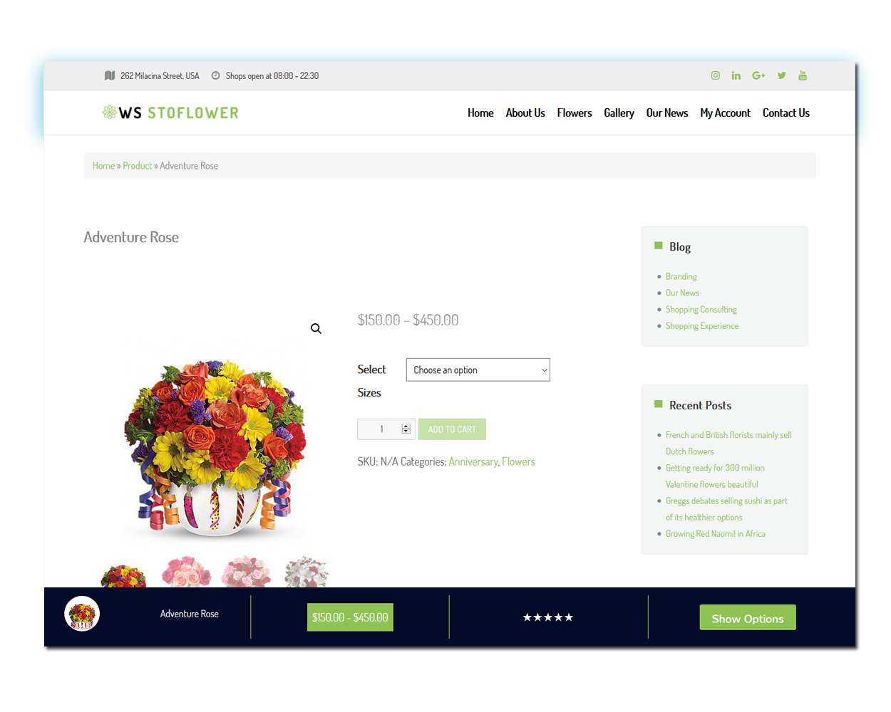 ws-stoflower-screenshot-wordpress-product